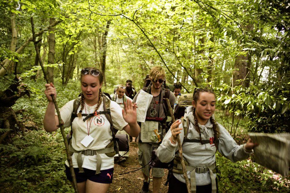 hikers walking through trees