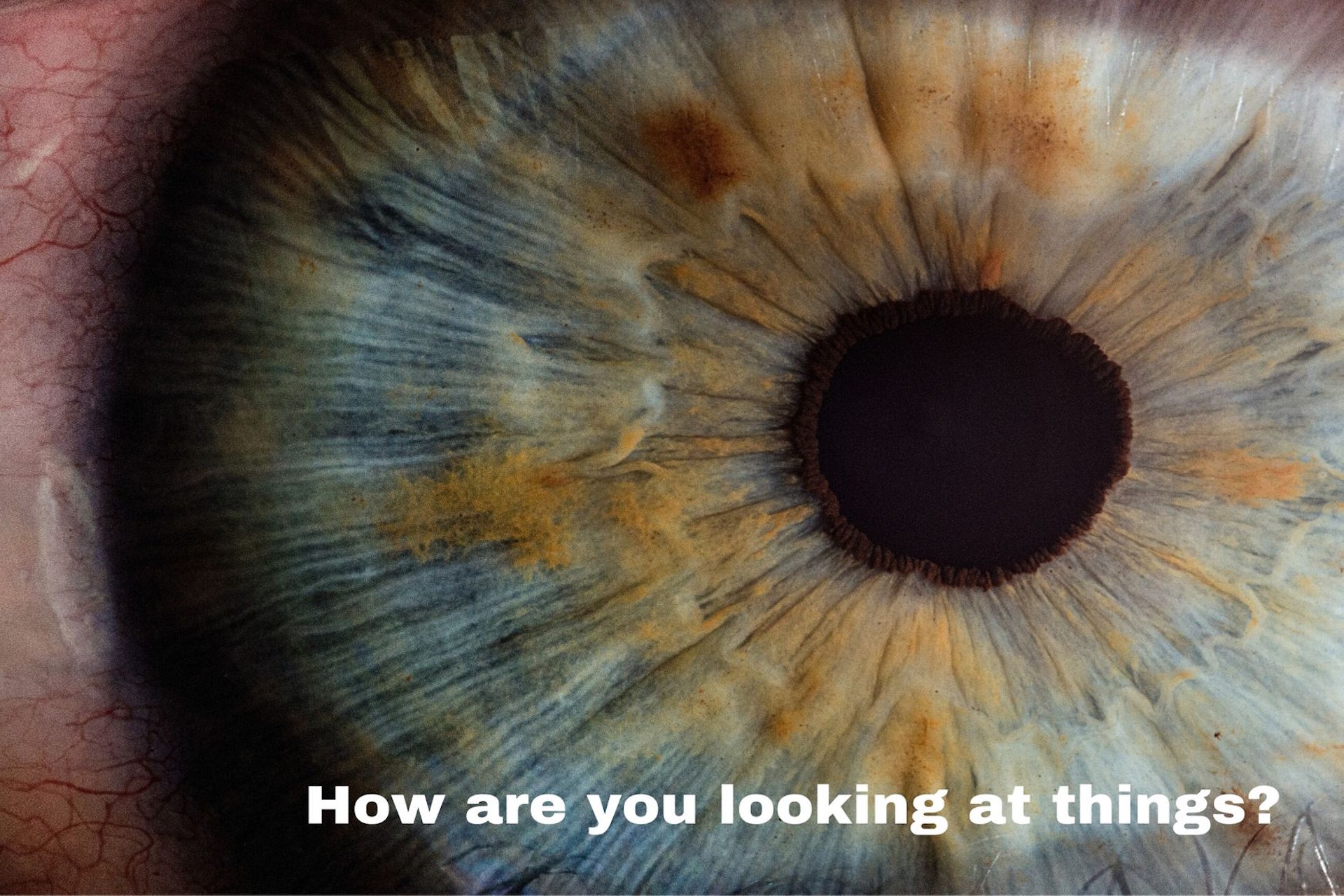 How are you looking at things?