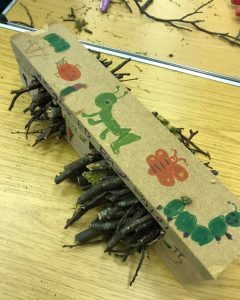 bug hotel made by GB member